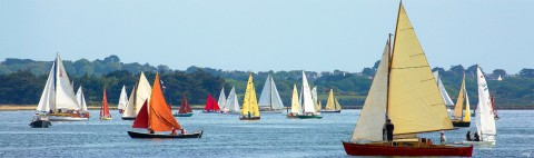 Photo Traditional sailing boats in the Gulf of Morbihan par Philip Plisson