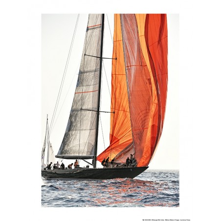 Spi orange aux Voiles de Saint-Tropez