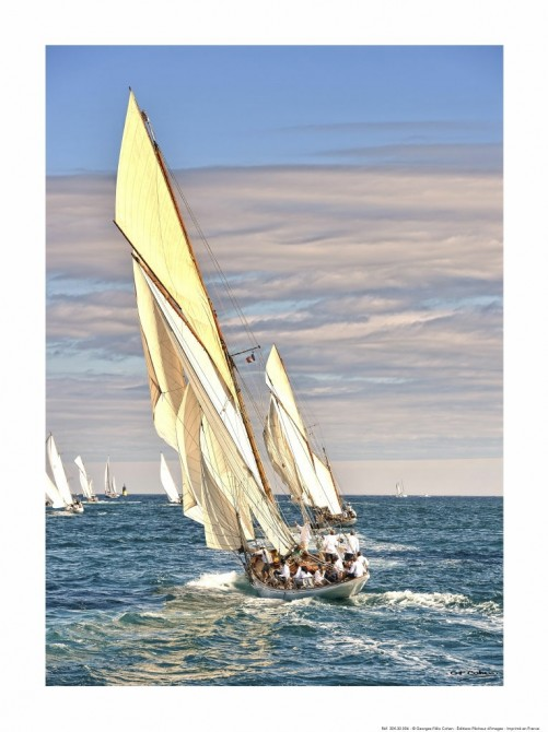 Photo Partridge aux Voiles de Saint-Tropez par Georges-Félix Cohen