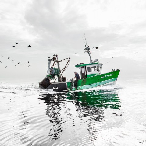 Photo Back from fishing in Quiberon's bay, Brittany par Philip Plisson