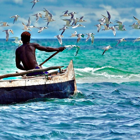 Photo Pêche en pirogue, Madagascar par Philip Plisson