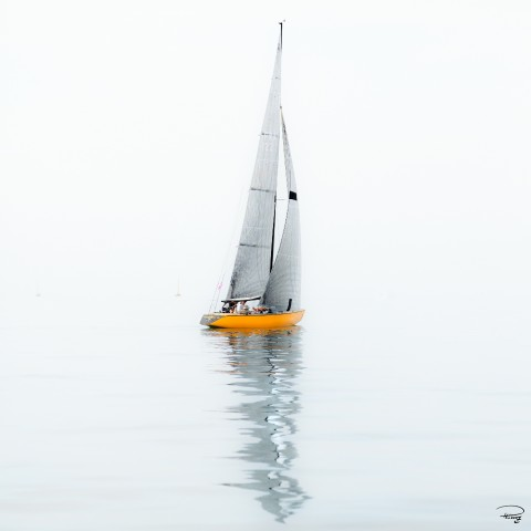 Photo 6 meters JI, yellow hull sailboat par Philip Plisson