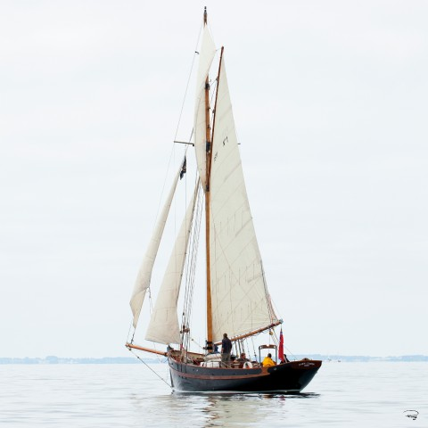 Photo Traditional sailing, old rigging par Philip Plisson
