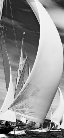 Photo Les Voiles de Saint-Tropez par Guillaume Plisson
