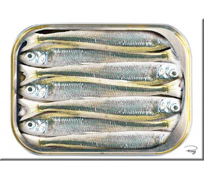 Photo Magnet, boite de sardines par Philip Plisson